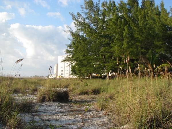 51st Street Holmes Beach Anna Maria Island Florida Beach View