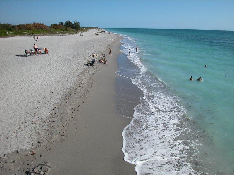 Venus Beach Florida >> Snorkeling Venice Beach Florida Shark Teeth Are The Main Attraction