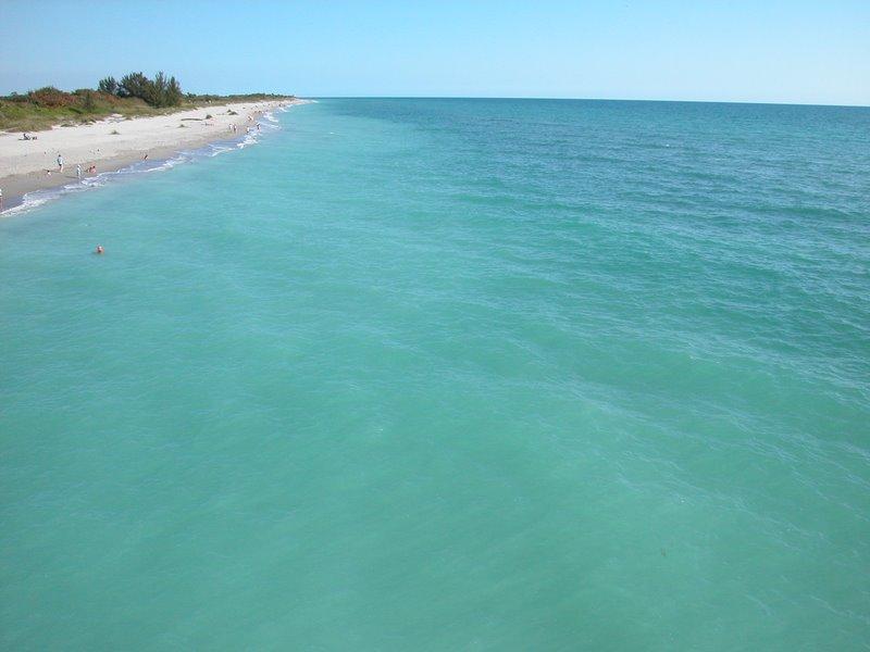 Snorkeling Venice Beach Florida Shark Teeth Are The Main - Venice beach florida map