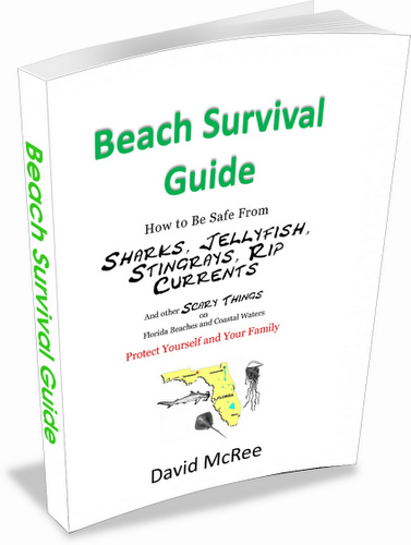 Florida Beach Survival Guide e-book cover