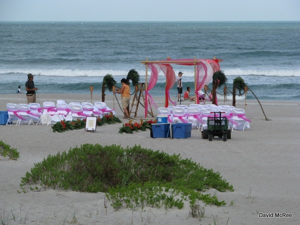 Lori Wilson Park is a very popular place for weddings.