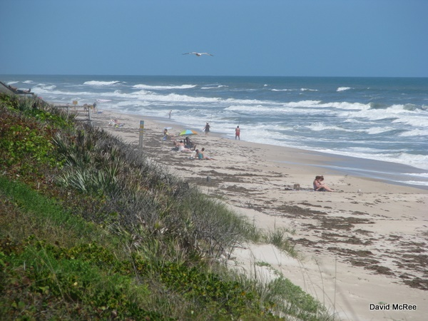 Playalinda Beach, Canaveral National Seashore. Merritt Island, Florida