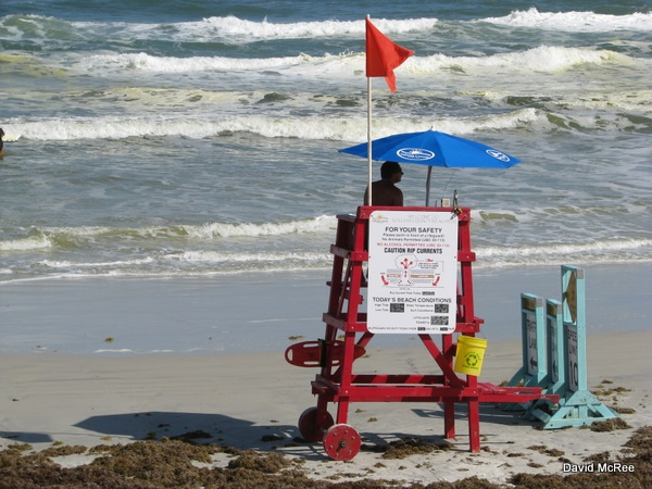 Lifeguard at Frank Rendon Park, Daytona Beach