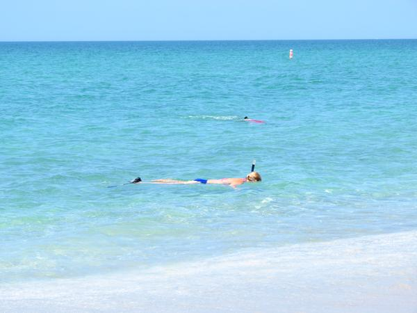 Snorkeling in the Gulf of Mexico at Manasota Key Beach.