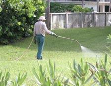 spraying lawn poison near the beach
