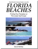 florida beaches book cover image.jpg