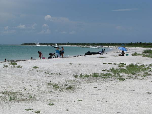 Crescent-shaped beach on Cayo Costa Island State Park, Florida.