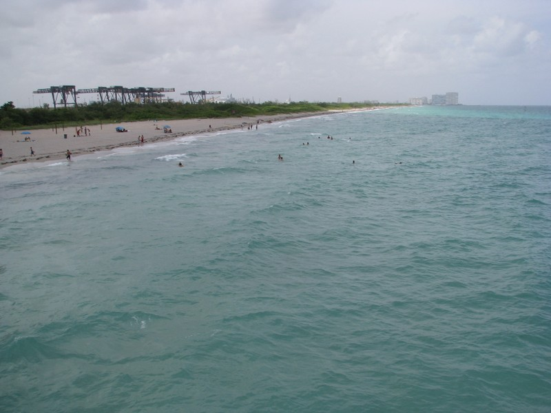Looking north from the Dania Pier.