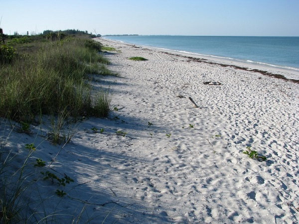 This is the beach at Don Pedro Island State Park.