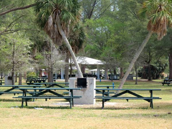 Picnic facilities in Fort Desoto Park.