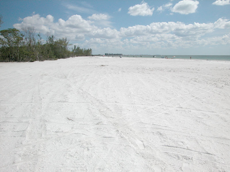 Simple Weddings-Get Married on Ft. Myers Beaches!