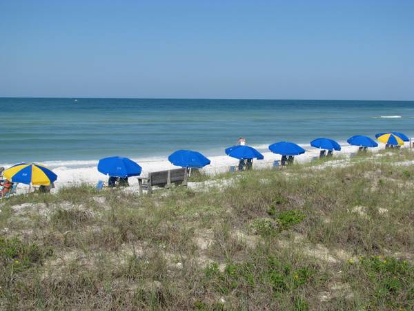 Honeymoon Island Beach With Umbrellas And Calm Water