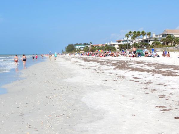 Indian Rocks Beach Florida News
