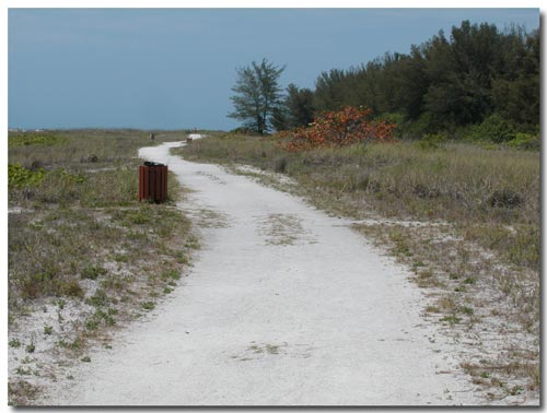 Trail through the dunes at North Lido, Sarasota, FL.