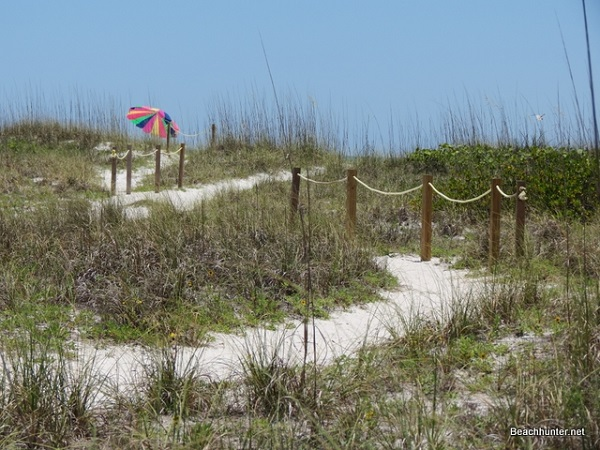 Dunes at Whitney Beach, Longboat Key, Florida.