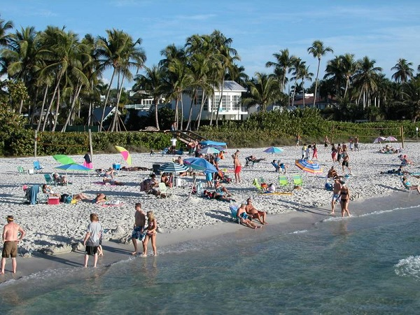 Naples beach with beachgoers and coconut palms.