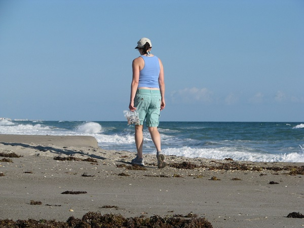 Looking for seabeans on a Florida beach.