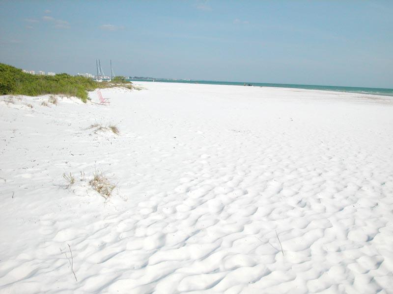 Best Public Beach Near Sarasota