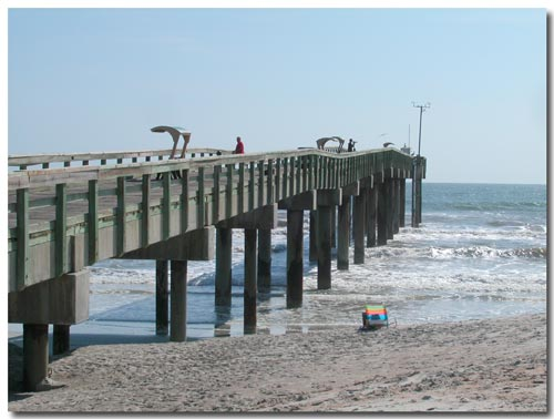If there is something more excellent than the trut by for St augustine fishing pier