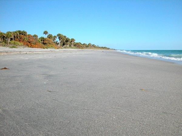 Venus Beach Florida >> Venice Florida Beaches