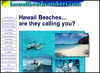 hawaiianbeachcombers website.jpg
