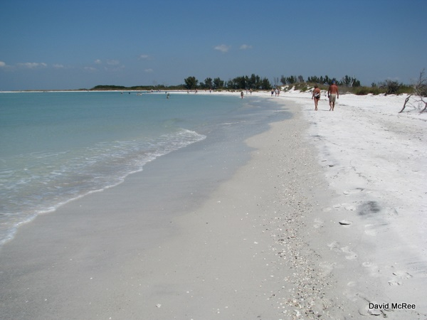 North Beach At Fort Desoto Park Florida