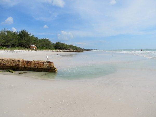 Coquina Public Beach Anna Maria Island Florida