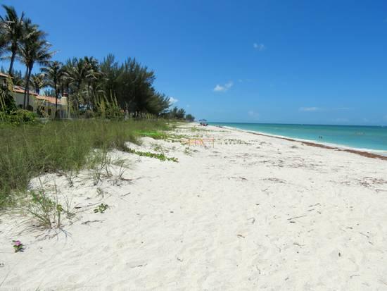 Gulf Beach On Gasparilla Island Florida