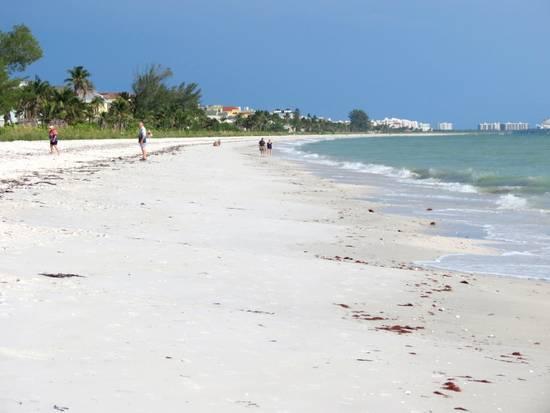 Bonita Beach Scene