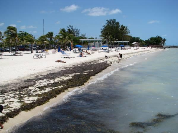 Higgs Beach Key West