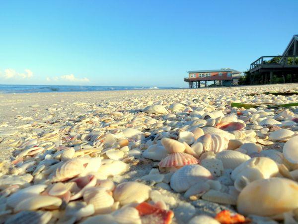 Little Gasparilla Beach With Al House