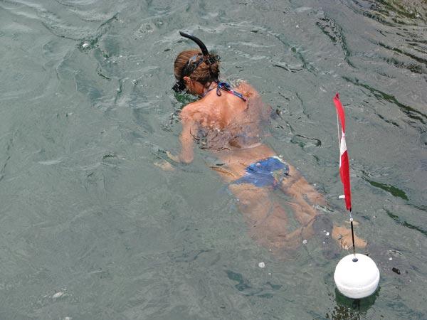 Snorkeling Sebastian Inlet