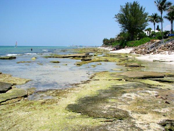 Point Of Rocks Beach Siesta Key Florida