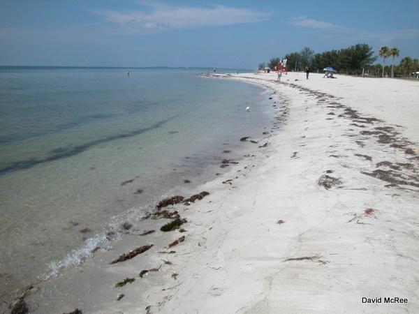 East Beach Fort Desoto County Park Saint Petersburg Florida
