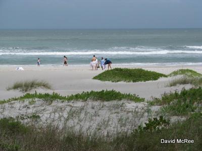 Lori Wilson Park Beach Cocoa Florida