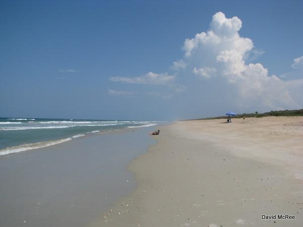 A Hot Summer Day At Apollo Beach Canaveral National Seas