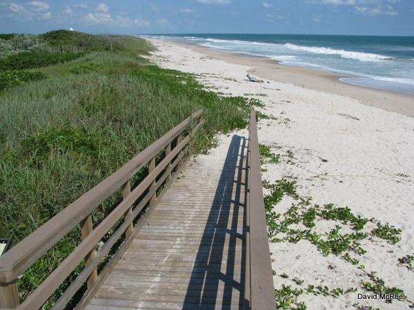 Canaveral National Seas Beach At Playalinda