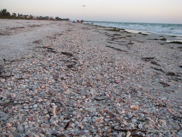 Best Beaches Near Orlando Florida Gulf Pros Cons